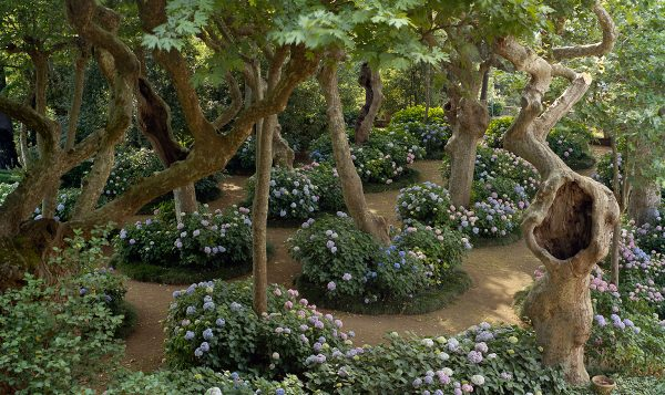 Classic Italian Gardens