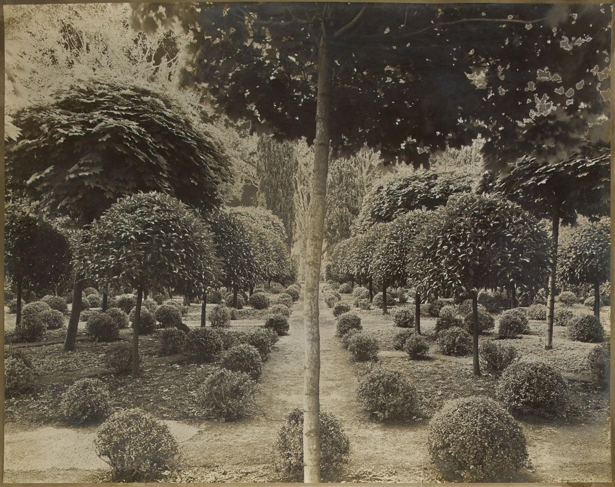 Giardini della Mandriana, Italy. 39,6 x 49,5 cm