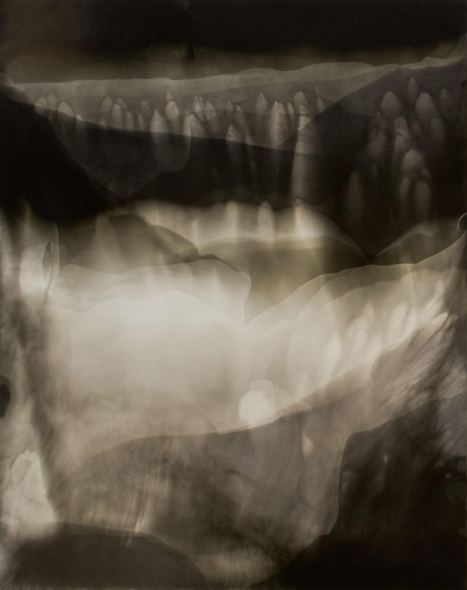 Terra Ignota # 731. 49,6 x 39,5 cm.